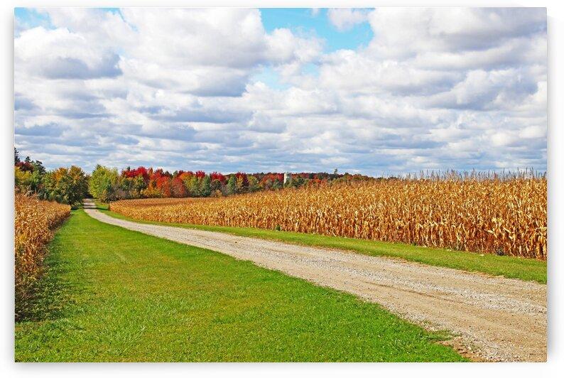 The Fall Farm by Deb Oppermann