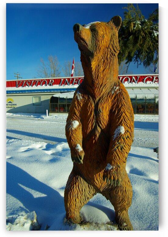 Bear on Guard by Kristian Gunderson