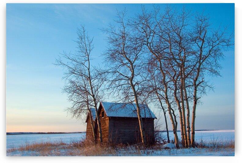Prairie Shed by Kristian Gunderson