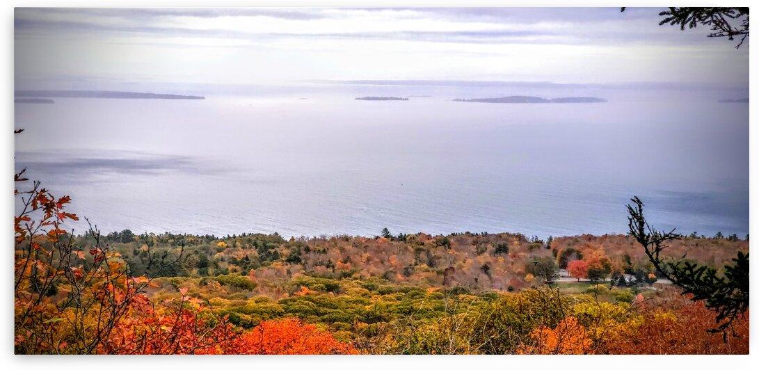 State Park by LiveeviL