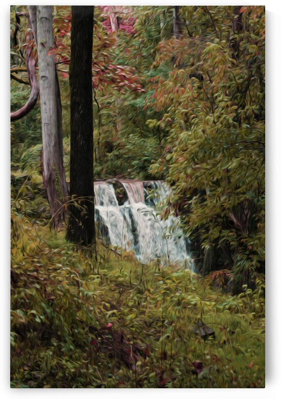 Autumn Waterfall by Lynnette Brink