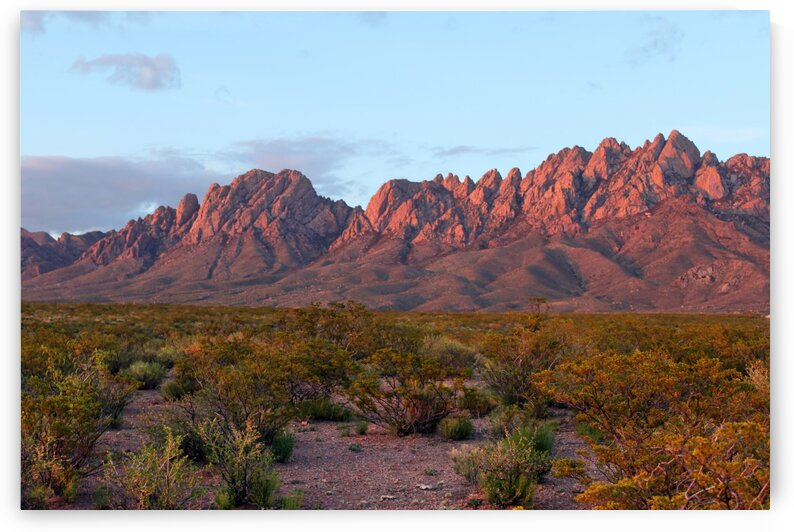 Organ Mountains 844 by Lawrence Costales