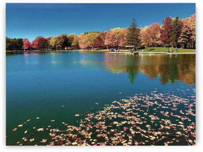 Autumn colours by Sebastian Mora