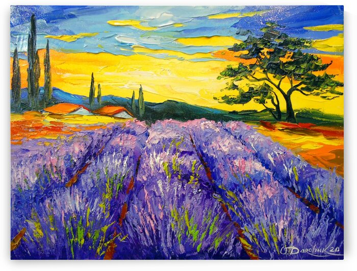 Lavender field by Olha Darchuk