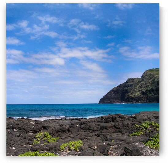 Hawaii Cliff and Coastline Square Panorama by Bobby Twilley Jr