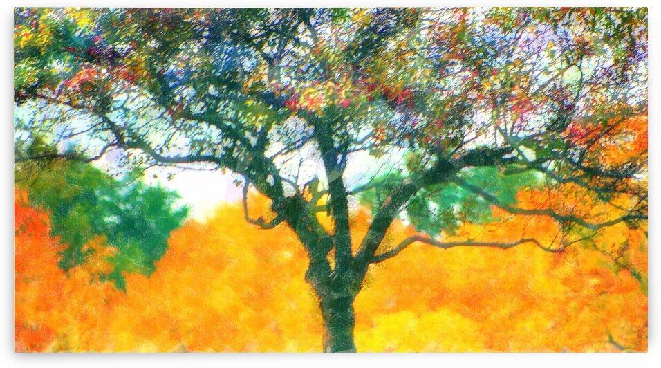 Gauzy Fall Trees Yellow by Ellen Barron O-Reilly