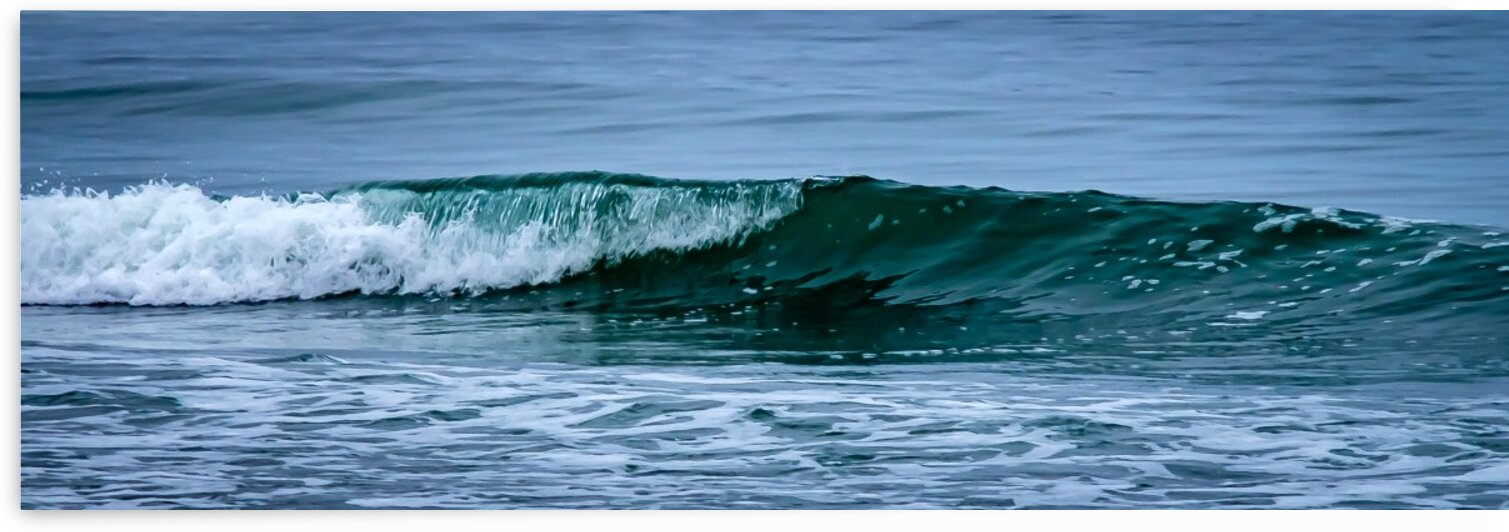 Pine Point Beach Wave by Dave Therrien