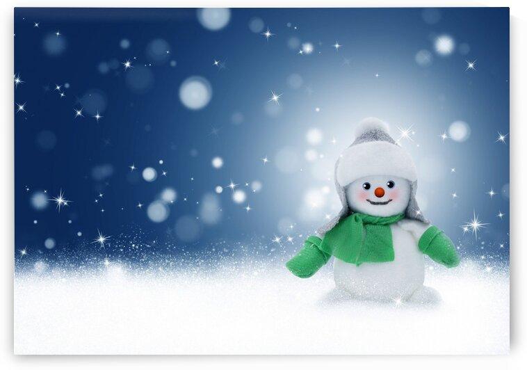 Snowman by Nature Art