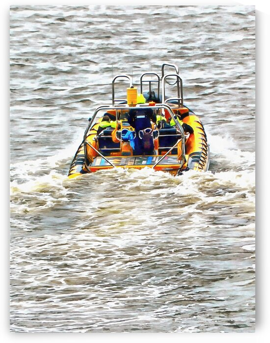 Tourist RIB Experience River Thames 3 by Dorothy Berry-Lound
