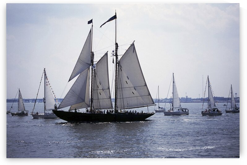 Blue Nose 2 tall Ship Norfolk Virginia by Atelier Knox