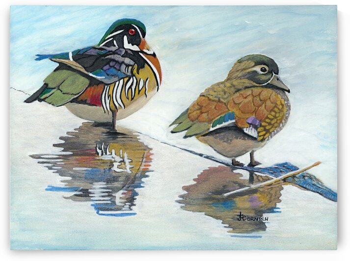 His And Hers by Janis Cornish