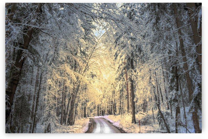 Winter road by Dario Barukcic
