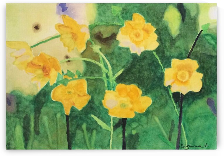 Buttercups  by Suzanne Hernandez
