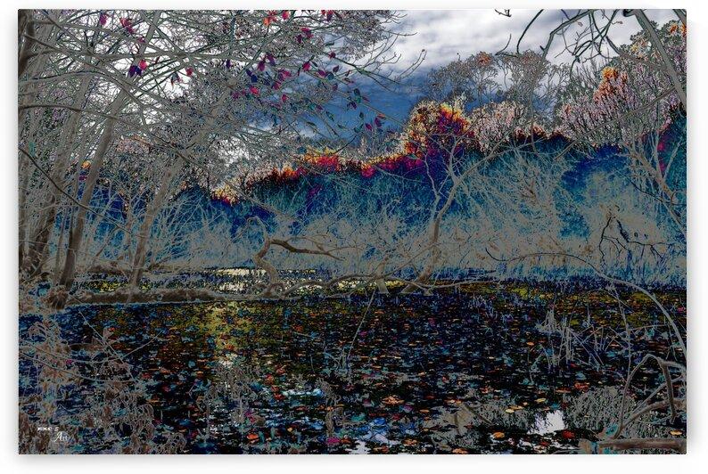 Dessine-moi lautomne...3- Collection EXC-S Art by Sylvain Bergeron Photographies