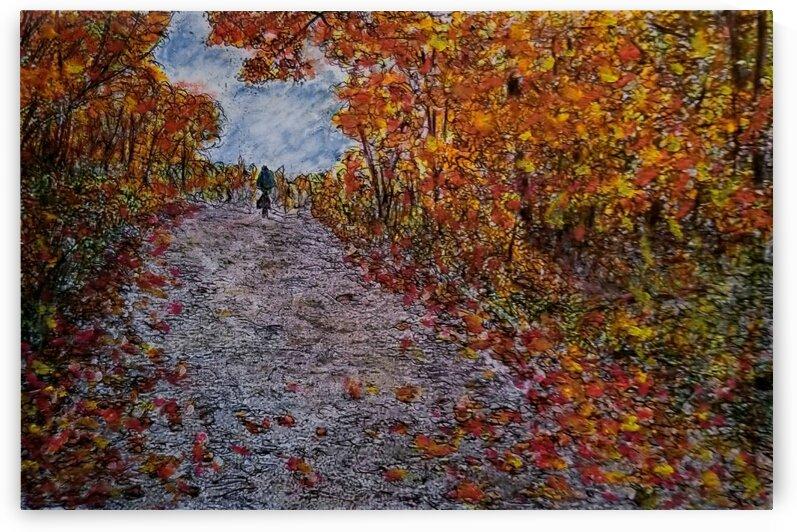 Autumn  Ride  by djjf