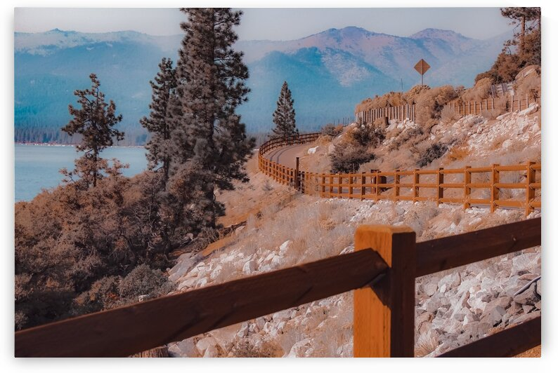 Walkway with pine tree and mountain background at Lake Tahoe Nevada USA by TimmyLA