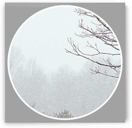 Snowing Momen II by Joan Han