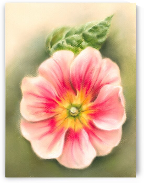 Pink and Red Primrose with Leaf by MM Anderson