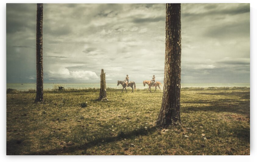 Island Equestrians by Becky Porter