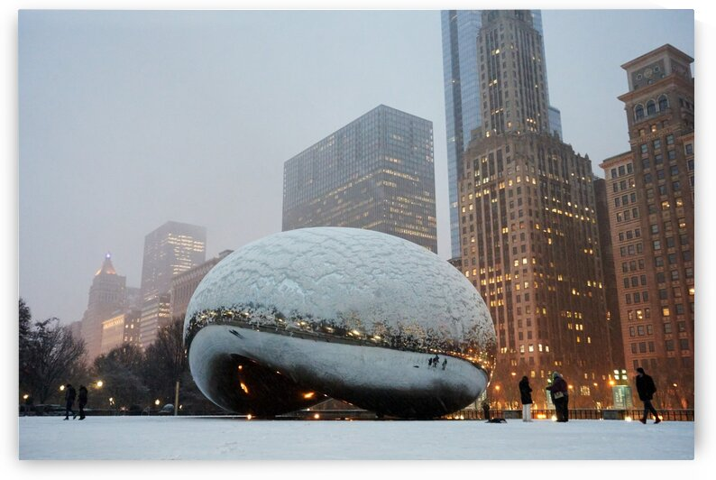 Snowy Day at the Bean by Nicole Buzzing Photography