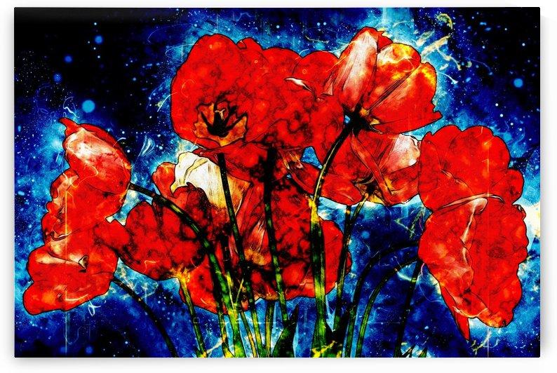 red tulips by Dagmar Marina