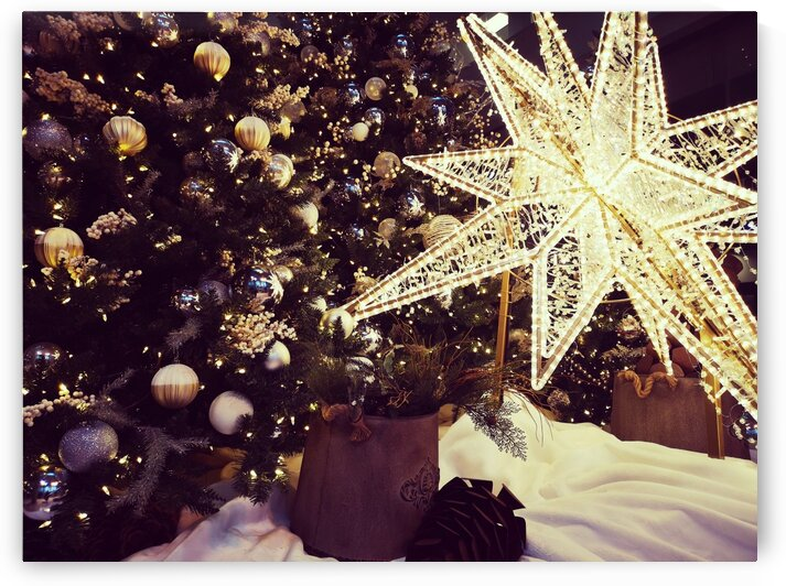 Twinkle little Star by Patricia Jekki