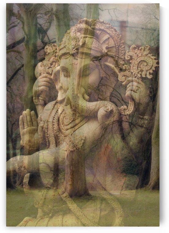 Ganesh Nature by mc2photography