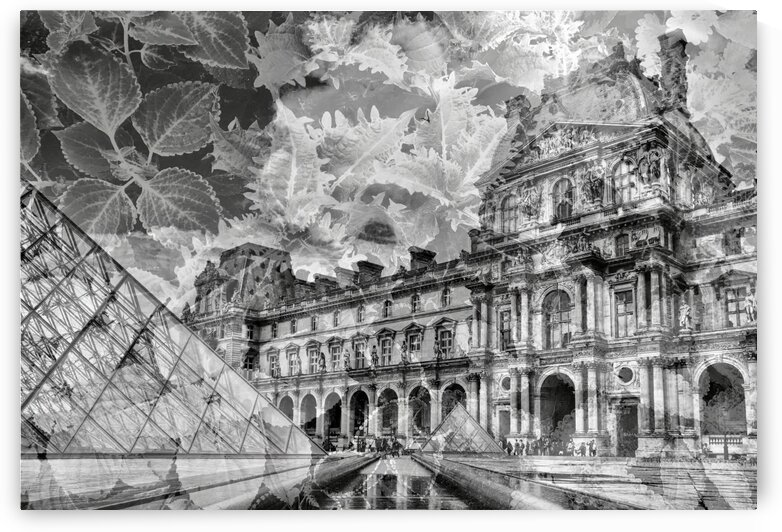 Louvre Leaves by mc2photography
