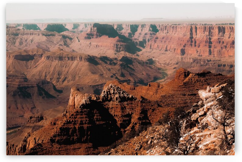 Summer view in the desert at Grand Canyon national park USA by TimmyLA