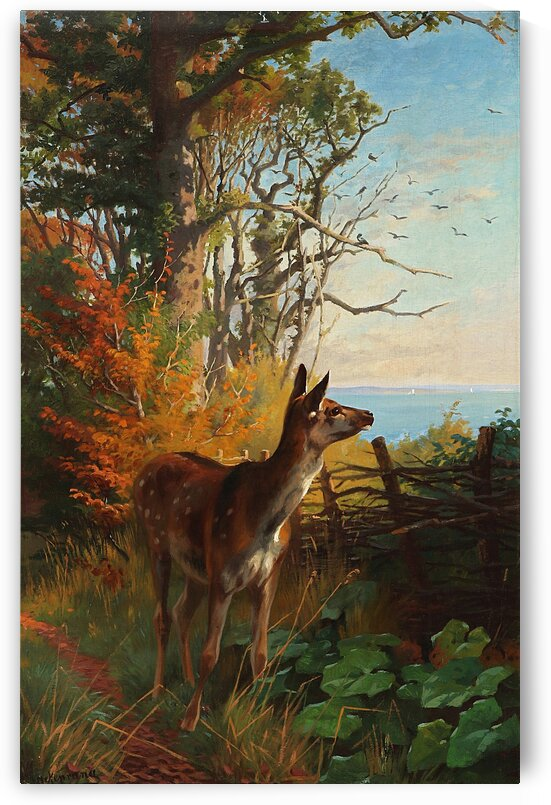 A Deer In The Forest_OSG  by One Simple Gallery