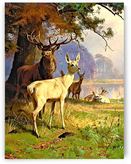 A Stag And Its Pack Near A Forest Pond_OSG by One Simple Gallery
