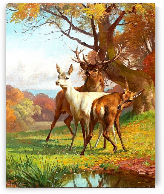 Forest Scene With Red Deer_OSG   by One Simple Gallery