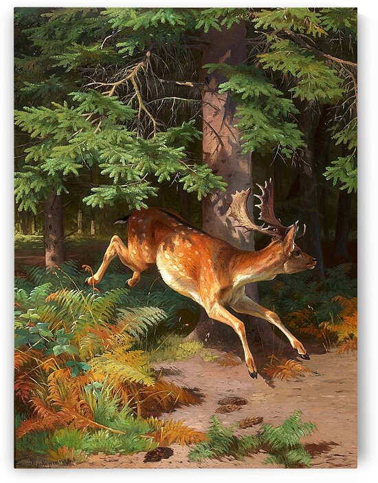 Red Deer In A Forest Clearing_OSG by One Simple Gallery