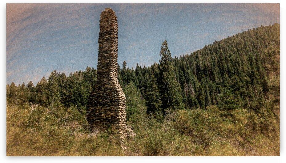 Lost Cabin by Nicholas