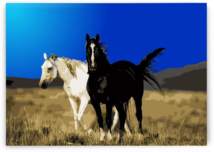 Horses by Vilson Art