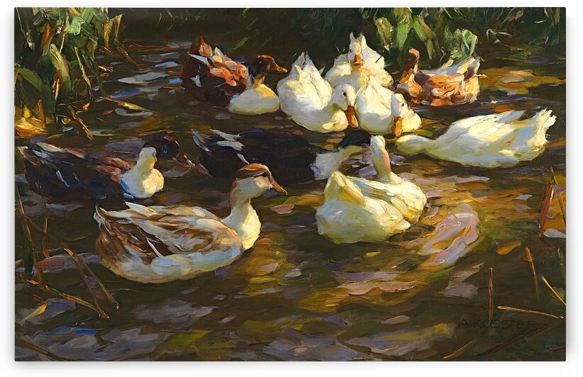 Ducks In The Pond_OSG by One Simple Gallery