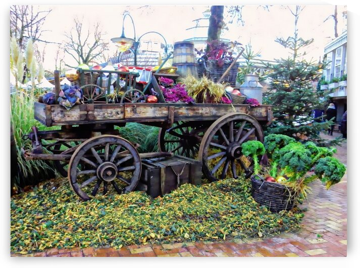 Christmas Display by Dorothy Berry-Lound