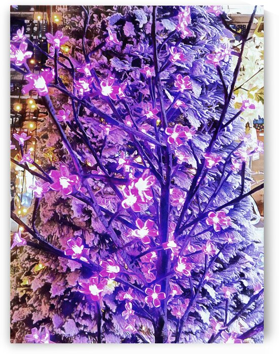 Christmas Lights 1 by Dorothy Berry-Lound