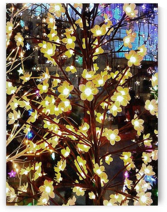 Christmas Lights 4 by Dorothy Berry-Lound