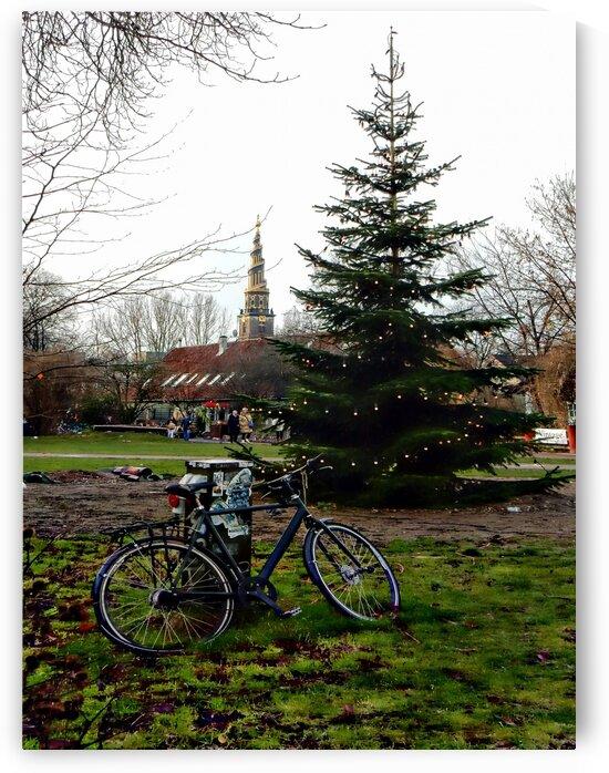 The Christmas Tree Christianshavn Copenhagen by Dorothy Berry-Lound
