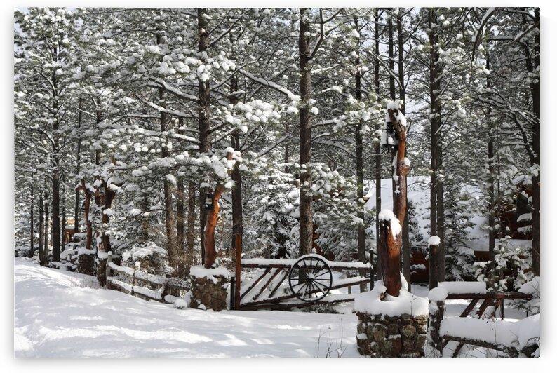 Winter Ranch by Jenni OBrien