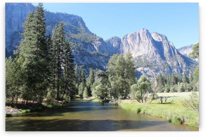 Yosemite National Park by Jenni OBrien