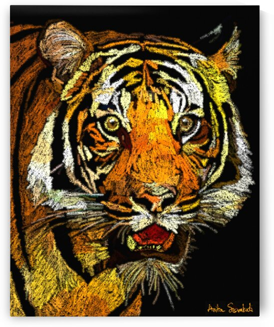 Eye of The Tiger by Anita Szombati by Anita Szombati