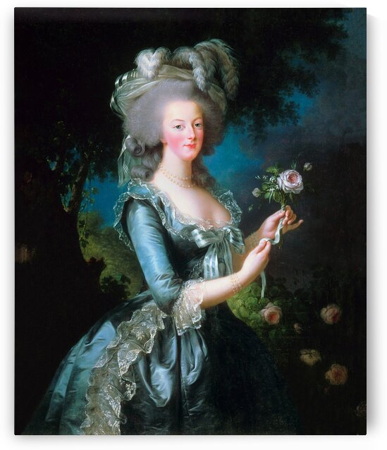 Marie Antoinette With Pink Rose_OSG by One Simple Gallery