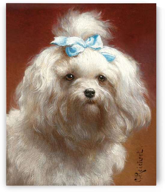 Cute White Dog With A Blue Bow_OSG by One Simple Gallery