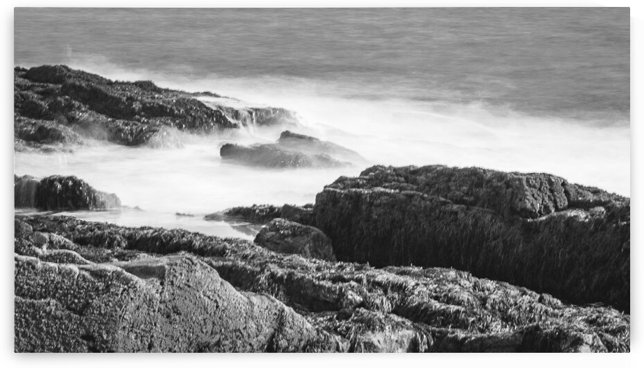 Cape Elizabeth Coast 3 by Dave Therrien