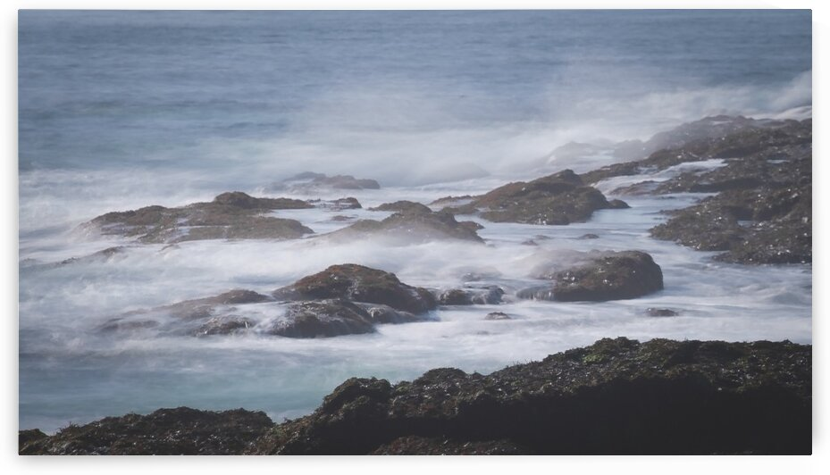 Cape Elizabeth Coast 2 by Dave Therrien
