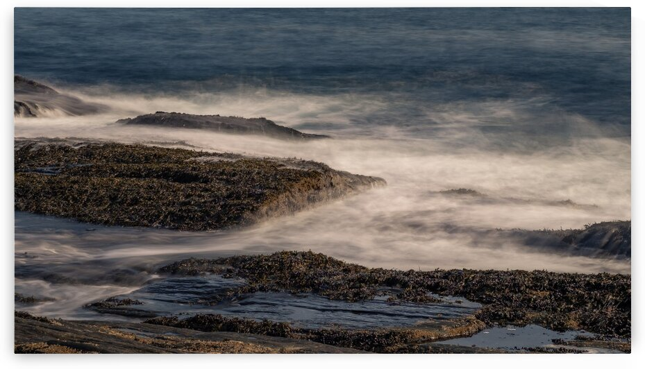 Two Light State Park 6 by Dave Therrien