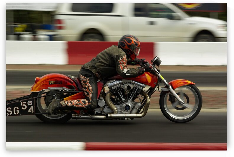 Harley by Kristian Gunderson