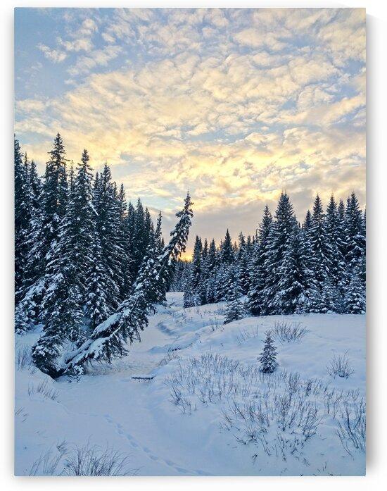 Frozen by Kristian Gunderson
